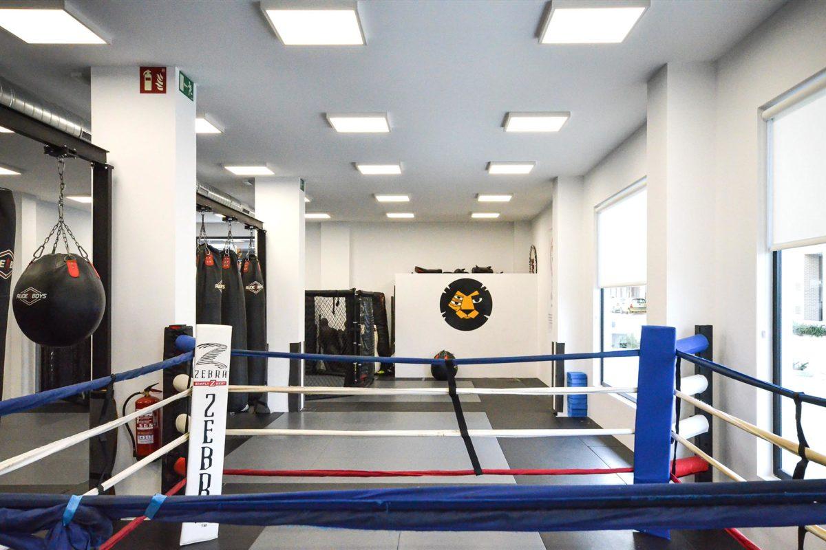 EIAMM: Artes marciales Zaragoza